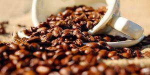 A dark roast coffee beans