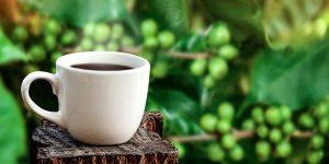 how-to-make-green-coffee