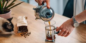 how-to-use-a-coffee-press-at-home