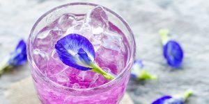 Iced Violet Drink (Starbucks Copycat Recipe)