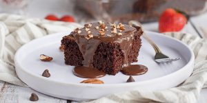 No Bake Flourless Chocolate Cake Recipe